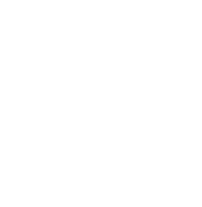 The University of South Wales logo